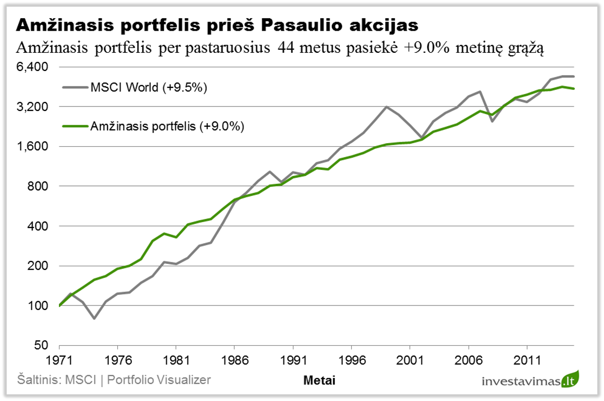 akcijų portfelio diversifikavimo strategija)